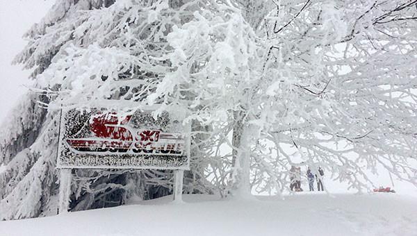 Mit Schneebedecktes Holzschild der DSV-Skischule Kollnau im Winter auf dem Kandel.